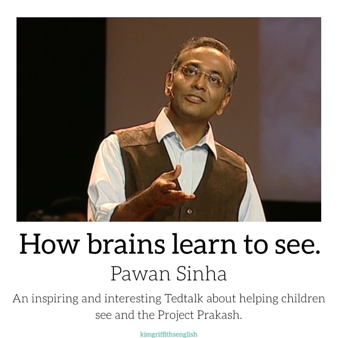 How brains learn to see Pawan Sinha