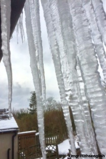 Long icicles in my garden in Lancashire, U.K.  The blog to learn, practice and enjoy English Esl. This week we talk about snow and ice words and idioms! www.kimgriffithsenglish.com