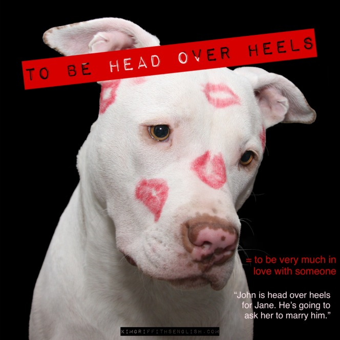 Idiom - to be head over heels. Kimgriffithsenglish.com the blog to improve, practice and maintain your English as a second language.