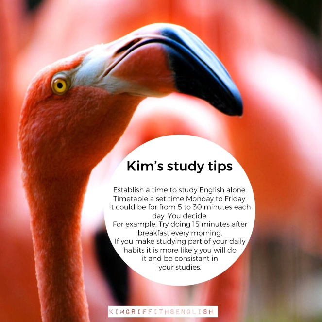 Kim's study tips - Establish a study time. 5 Smart strategies for English class. From the English teaching blog www.kimgriffithsenglish. The place to improve practice and maintain you English as a second language.